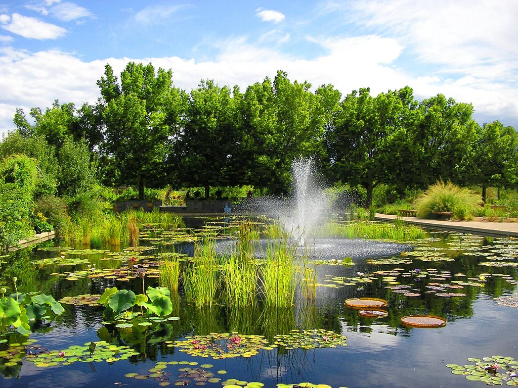Botanic Gardens - places to visit in denver