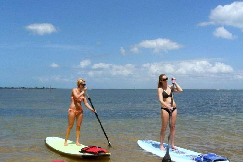 Scuba-Diving and Snorkeling - things to do in anna maria island