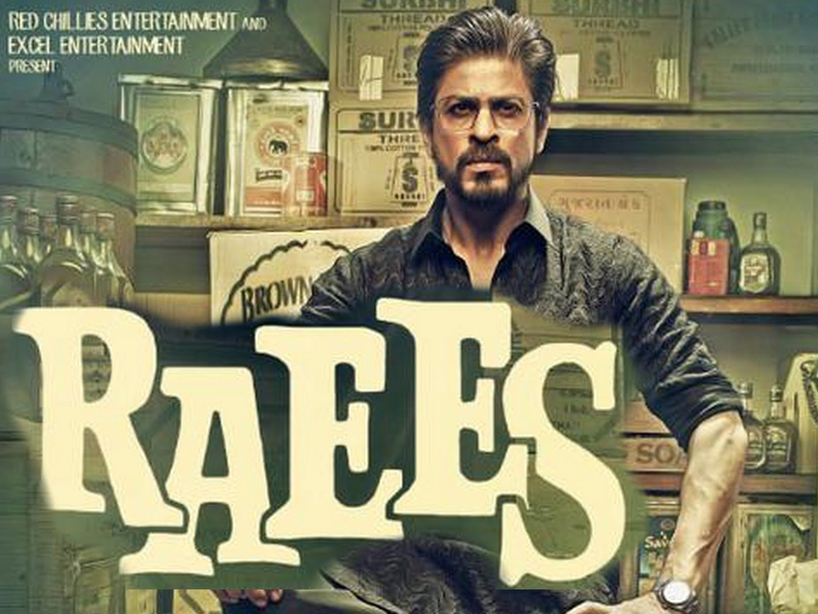 raees 2017 movie review